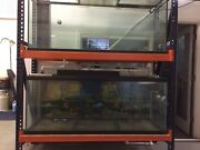 Two 140 Gallon Fish Tank Glass Top + Wet Dry Filter + Stand