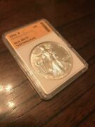 1996-p Perfect Gem Silver Eagle Extremely Rare