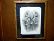 Framed Double Drop Tine Whitetail Deer Picture By Dallen Lambson 18.5 X 22.5