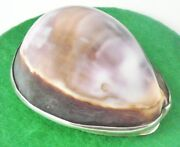 Scottish Provincial Silver Cowrie Shell Snuff Box Laurence Aitchison Of Falkirk