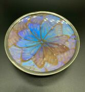 Vintage Real Butterfly Wings Silver Tone Bowl Rare Butterfly Morpho Sky Blue 5