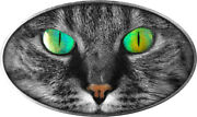 Kitt Cat - Niue 2 2017 Silver Coin With Holographic-eye - Sold Out From Mint
