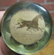 19c Antique Harness Horse Racing Bridle Rosette 1800s Brass And Bevel Cut Glass