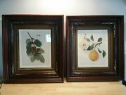 Pair Antique Eastlake Victorian Frame 1860s With Fruit Prints Maple Tiger