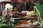 Dog Tired, Labrador Puppies And Duck Decoys Metal Sign By Kevin Daniel, Hunting