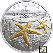 2017atlantic Starfish-from Sea To Sea To Seaand039gold-plated 20fine Slvr 1oz18238
