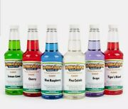 Party Fun Hawaiian Shaved Ice Syrup 6 Pack Pints Snow Cone Flavors