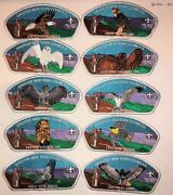 Boy Scout Greater New York Councils The Birds Of Ten Mile River Camp Csp Set