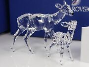 Doe And Fawn, Clear Crystal Figurine - 5001052 - Retired