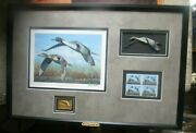 Ducks Unlimited 2010 Framed With Duck Stamps Gold 5 1361/3500 Peter Mathios