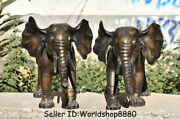 20.8 Old Chinese Bronze Feng Shui Animal Elephant Auspicious Wealth Statue Pair