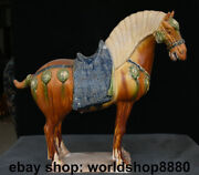 17.2 Old China Tang Sancai Pottery Handcrafted Dynasty War Horse Horses Statue