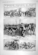 Old Print 1916 Atkins War Siers France Milking Maid Cows Horses Lester L 20th