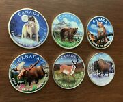 Six 1 Oz Silver Colorized Canada Wildlife Rounds 2011-2013 / Rare Complete Set