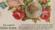 Dr. Hand's Colic Cure Quack Medicine Hand Flowers Ship Victorian Trade Card