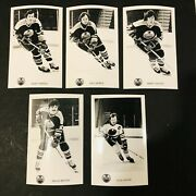 1976-77 Wha Edmonton Oilers Team-issue Player Postcard Photo Lot Of 15 - Sather