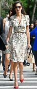 Alexander Mcqueen Obsession Print Dress - New With Tags