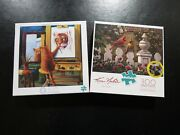 Buffalo Games 300 Large Piece Puzzles Emily's Garden Cardinals Norman Catwell Co
