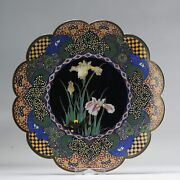 Lovely 19c Antique Meiji Period Japanese Charger Flowers Bronze Cloisonne