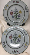 2 Spode Summer Palace Fine Stone 10 Dinner Plates W/floral Design And Green Trim