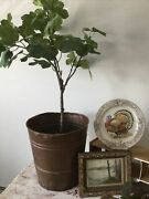 Old Antique Copper Coal Mining Bucket - Buette Montana - The Real Deal