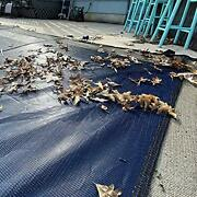 Winter Block Leaf Net For Inground Fits 24andrsquo X 40andrsquo Rectangle Pool Andndash Durable ...