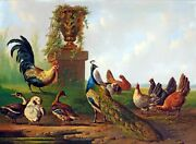 A Garden With A Peacock A Rooster Hens And Ducks Ceramic Tile Mural Backsplash