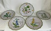 Peasant Village 78159 Hand Painted Italy Ceramic Wall Plates Plants Lot Of 5