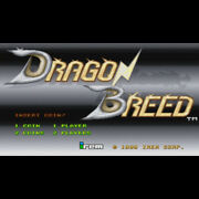 Dragon Breed Arcade Game Pcb Irem F/s From Japan