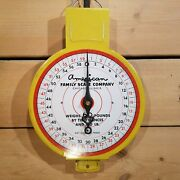 Vintage American Family Scale Company 60 Lb. Scale - Swanky Barn