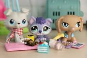 Lps Collie Gray 67 Lps Husky 1018 Purple Dachshund 909 Puppy With Accessories