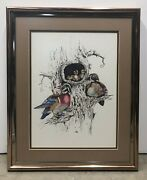Framed Realism Colored Pencil Drawing Birds Multicolor Singed Artist Frank 1978