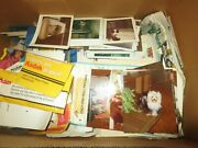 1980s Yorkie Dog Breeder Photograph Lot Of 500 Pictures Dog Shows Puppies