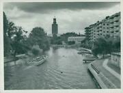 Pressfolo Rol Nav Since Zebron For This Ellis These - Vintage Photograph 1322487