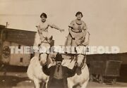 Vintage World At Home Shows Female Horse Daredevils Circus Carnival Photo Il Fl