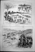 Old Antique Print Barrackpore Races Springbok Shooting South Africa 1890 19th