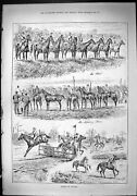 Old Antique Print Horse Racing Florida America Jumping Fences Sport 1887 19th