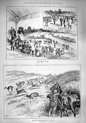 Old Antique Print 1890 Barrackpore Races Springbok Shooting Africa Sport 19th