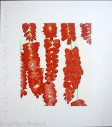 Donald Sultan And039red Wall Flowers Rowsand039 Signed Silkscreen Print Limited Edition