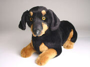 Smooth Dachshund Puppy By Piutre Hand Made In Italy Plush Stuffed Animal Nwt