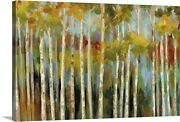 Young Forest Iii Canvas Wall Art Print, Tree Home Decor