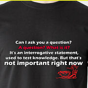 Mister Can I Ask You A Question A Question What Is It Airplane Funny T-shirt