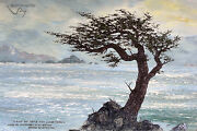 Oil Painting - Monterrey Lone Cypress By Sever Woll