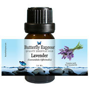 Lavender Essential Oil Lavandula Officinalis Butterfly Express 100 Pure