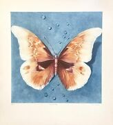 Ltd. Ed. Mezzotint Butterfly Hand Signed By G.h. Rothe