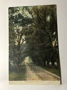 Collectible Unused The Willow Warwick New York Postcard 1907's