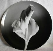 Robert Mapplethorpe 'flower, 1986' 1989 Collector's 12 Plate By Swid Powell Euc