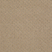 My Expression Carnoustie 43 Oz Super Soft Cut And Loop Pattern Indoor Area Rug