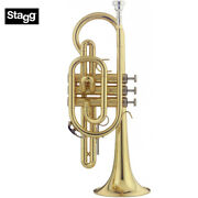 Stagg Ws-cr215 Bb Cornet Clear Lacquer With Silver Plated Mouthpiece And Case