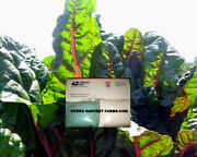 Hydroponic Nutrient For All Garden Uses Makes 256 Gallons